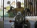 YAMAHA - VIRAGO 250   2006